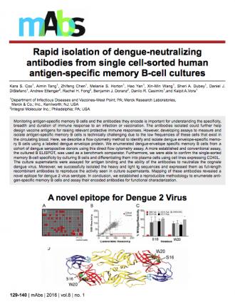 4.-2016_Cox_Dengue-MAb-isolation_FINAL.pdf-2017-11-20-12-40-17